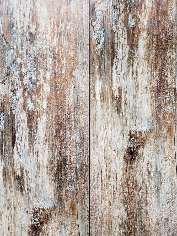 Coupez les textures et le fond en bois photos libres de droits
