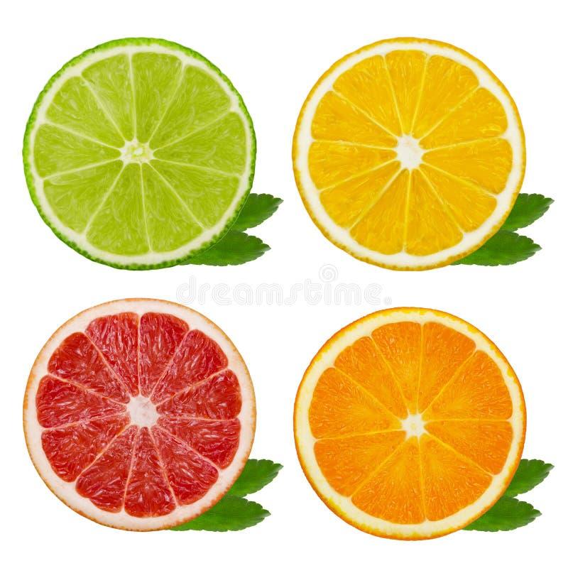 Coupez les tranches de chaux et de citron, orange, pamplemousse rose d'isolement sur le fond blanc Chemin de coupure photo stock
