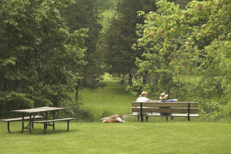 Download Couple on Bench with Dog stock photo. Image of romantic - 900836