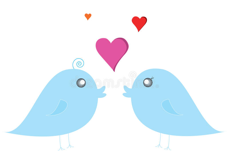 Download Couple bird stock illustration. Image of chatting, alert - 16017227