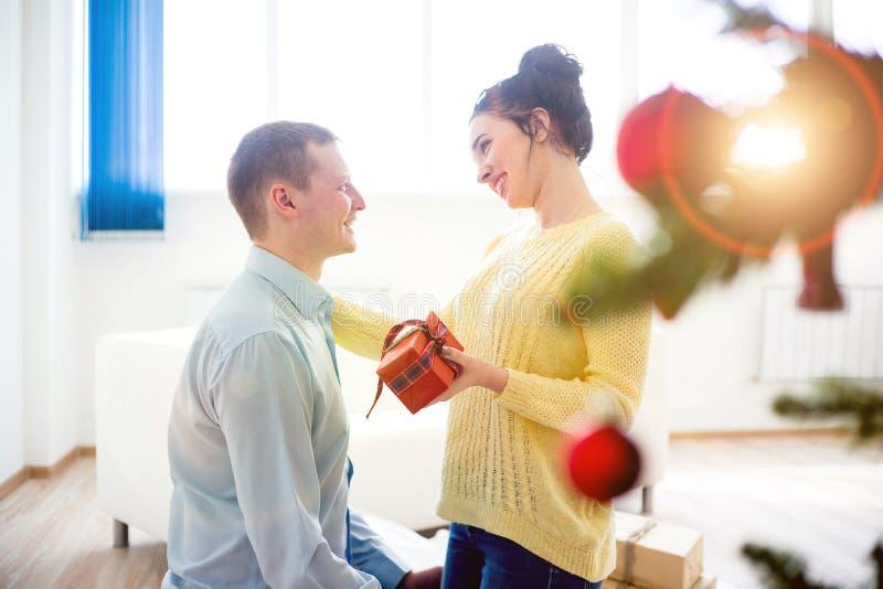 Couple celebrating christmas royalty free stock photo