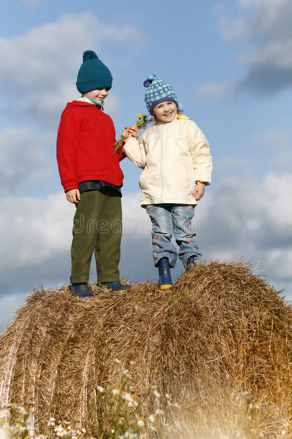 Couple children. Stand on large hay bale, sister and brother on field with chamomile stock images