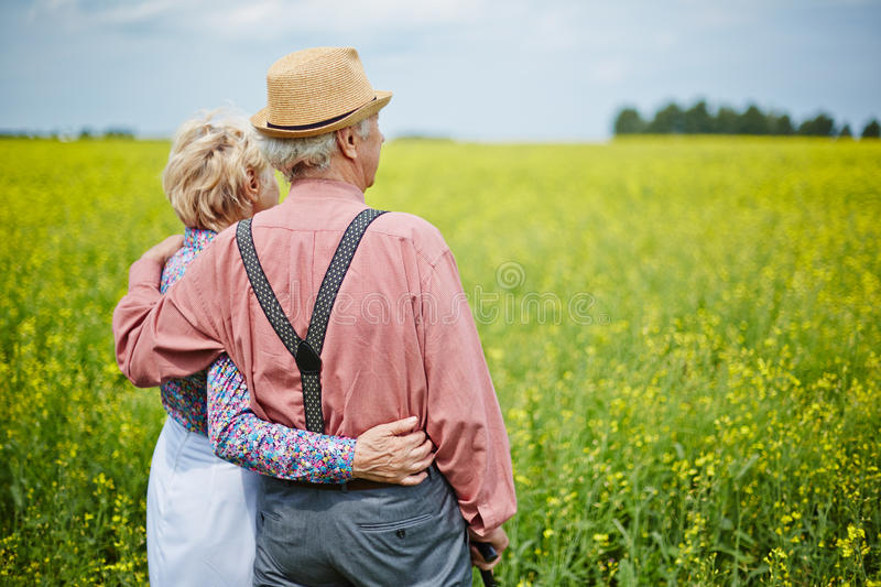 Couple in the country. Rear view of senior couple standing among meadow in summer stock photo