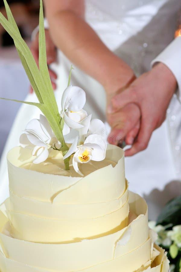 Couple Cutting Wedding Cake royalty free stock photo