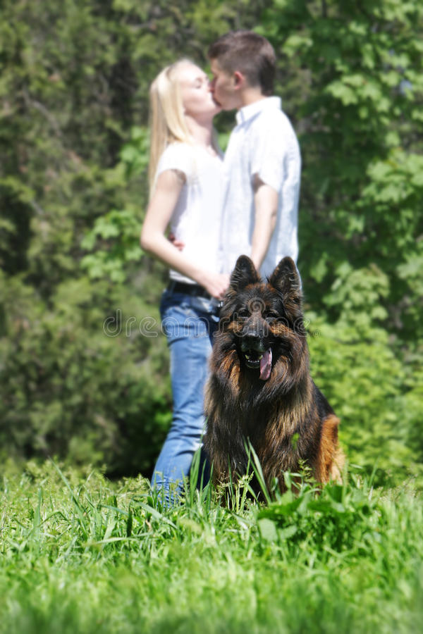 Download Couple with dog outdoors stock photo. Image of girl, friendship - 19525482