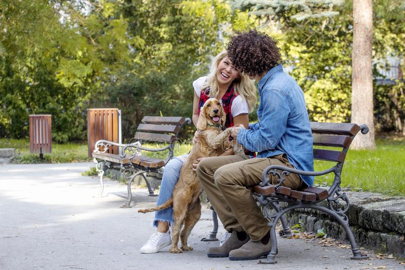 Couple with dog in park stock images