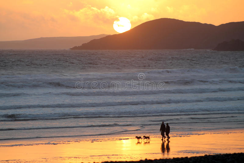 Couple and dogs with beach sunset stock photos