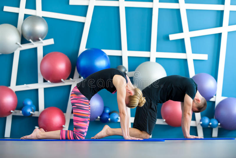 Couple doing yoga in a studio. Young people in yoga class in Cat pose. Yoga group concept royalty free stock photo