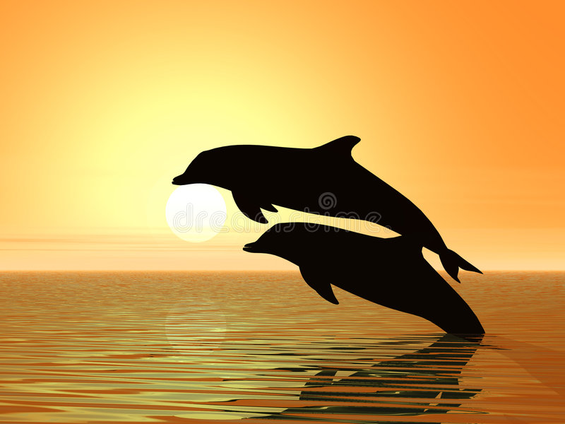 Couple of dolphins vector illustration