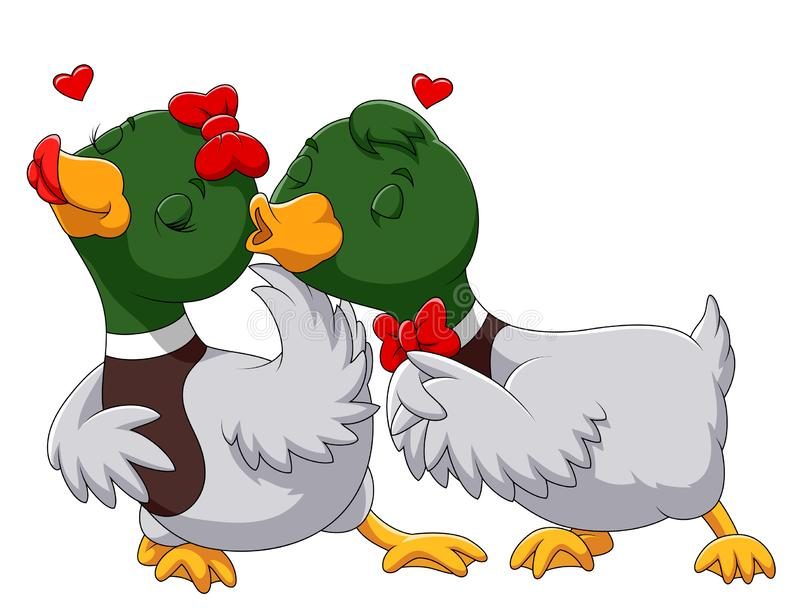 Couple duck in love and kissing royalty free illustration