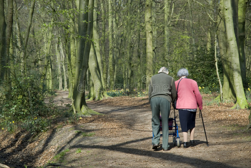 Couple of elderly people. With walker in nature stock image