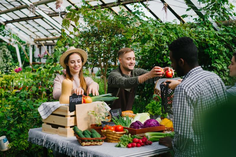 Couple of farmers selling organic food vegetables in farm market talking smiling stock photos