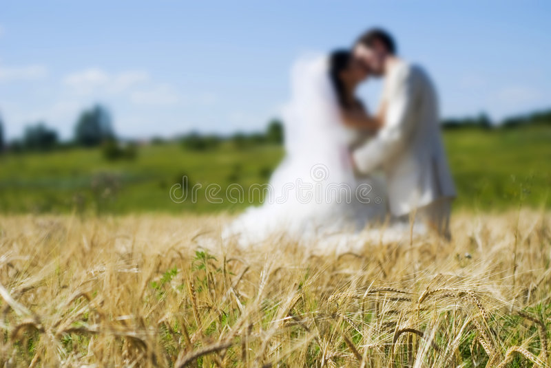 Couple in field stock photos