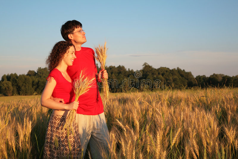 Couple in field with wheat in hands royalty free stock images