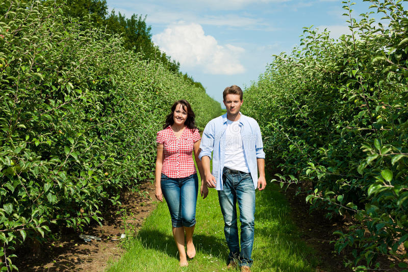 Download Couple In Fruit Orchard After Summer Stock Photos - Image: 25271193