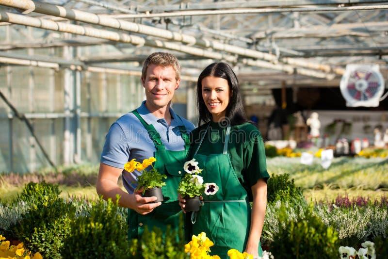Couple of gardener in market garden or nursery