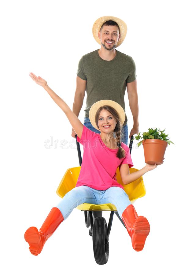 Couple of gardeners with wheelbarrow on background stock photography