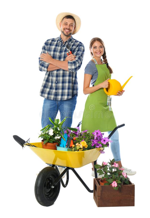 Couple of gardeners with wheelbarrow and plants on background royalty free stock images
