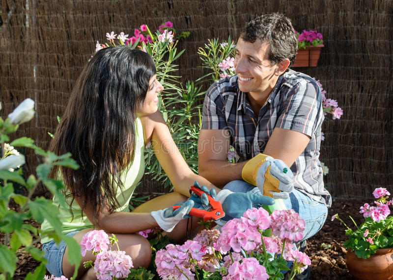 Download Couple gardening stock photo. Image of leisure, caucasian - 26556972