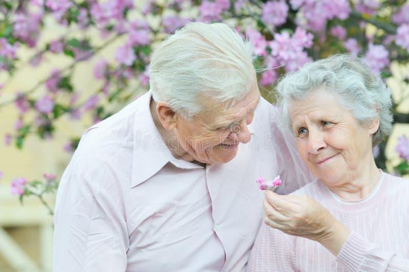 couple happy στοκ εικόνες με δικαίωμα ελεύθερης χρήσης