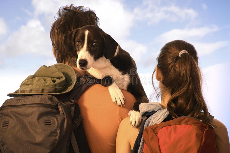 Couple hiking with dog stock images
