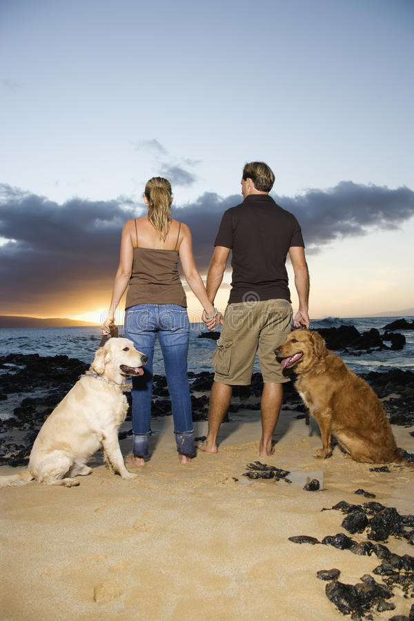 Free Couple Holding Hands And Walking Dogs On The Beach Royalty Free Stock Photography - 12738517