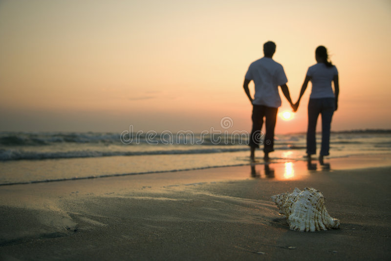 Couple holding hands on beach. Back view of mid-adult couple holding hands walking on beach with seashell in foreground royalty free stock images