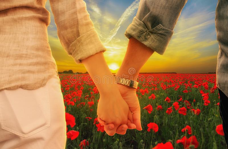 couple holding hands at sunset in poppies meadow royalty free stock image