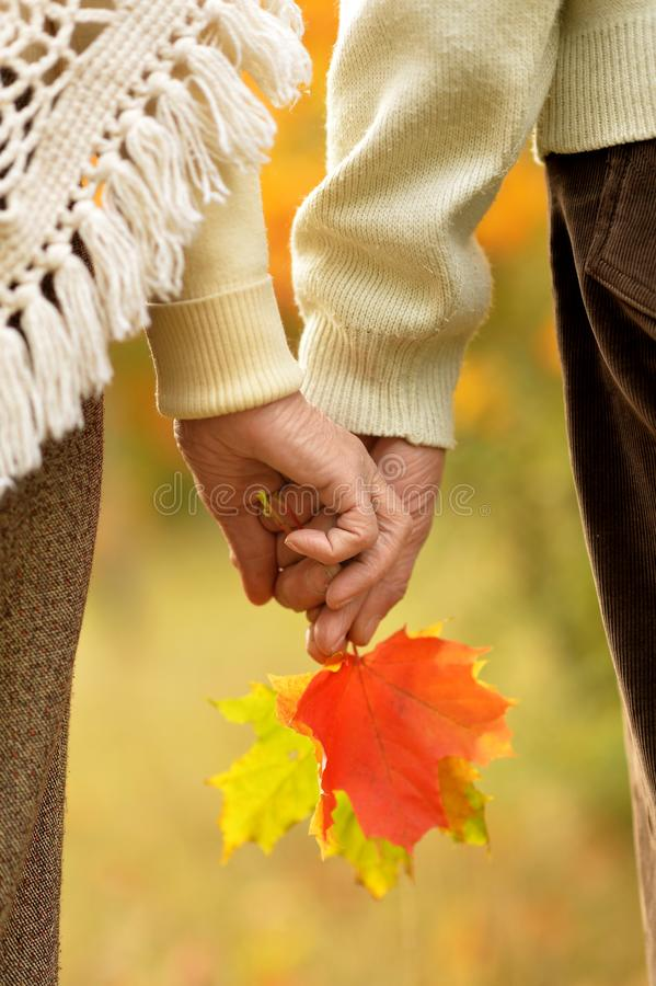 Couple holding hands together on background of park close up. Couple holding hands together on background of park royalty free stock images