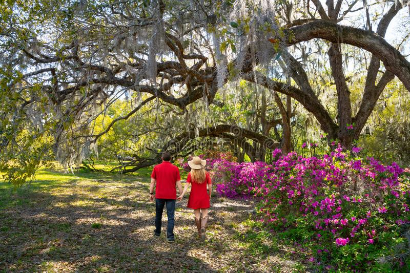 Couple holding hands walking in the beautiful park on a spring afternoon. royalty free stock image
