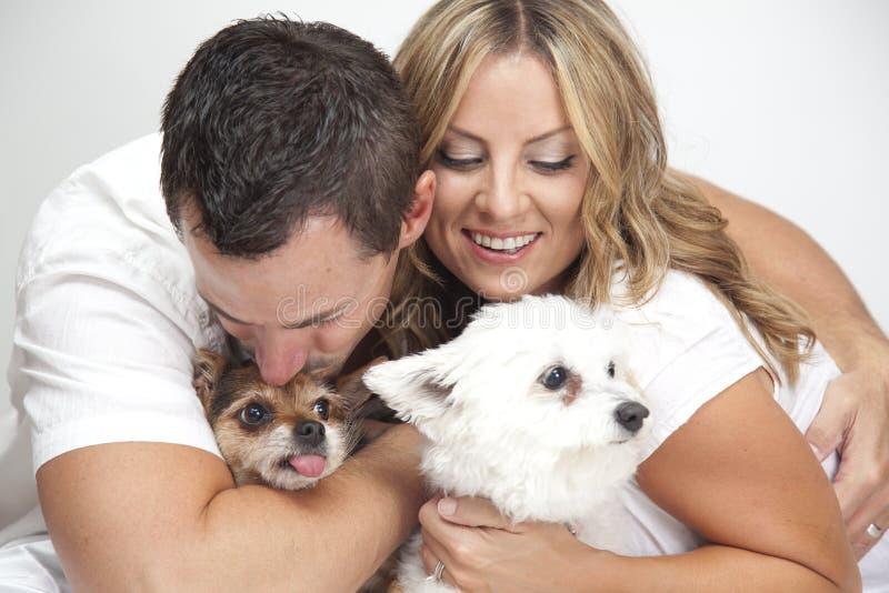 Couple hugging pet dogs stock photos
