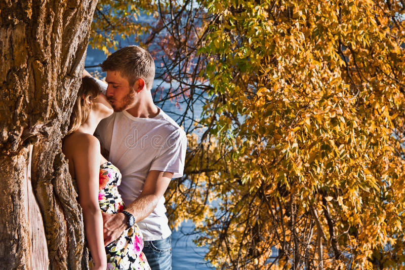 Couple kissing in autumn. Young couple kissing under a tree with yellow changing leaves