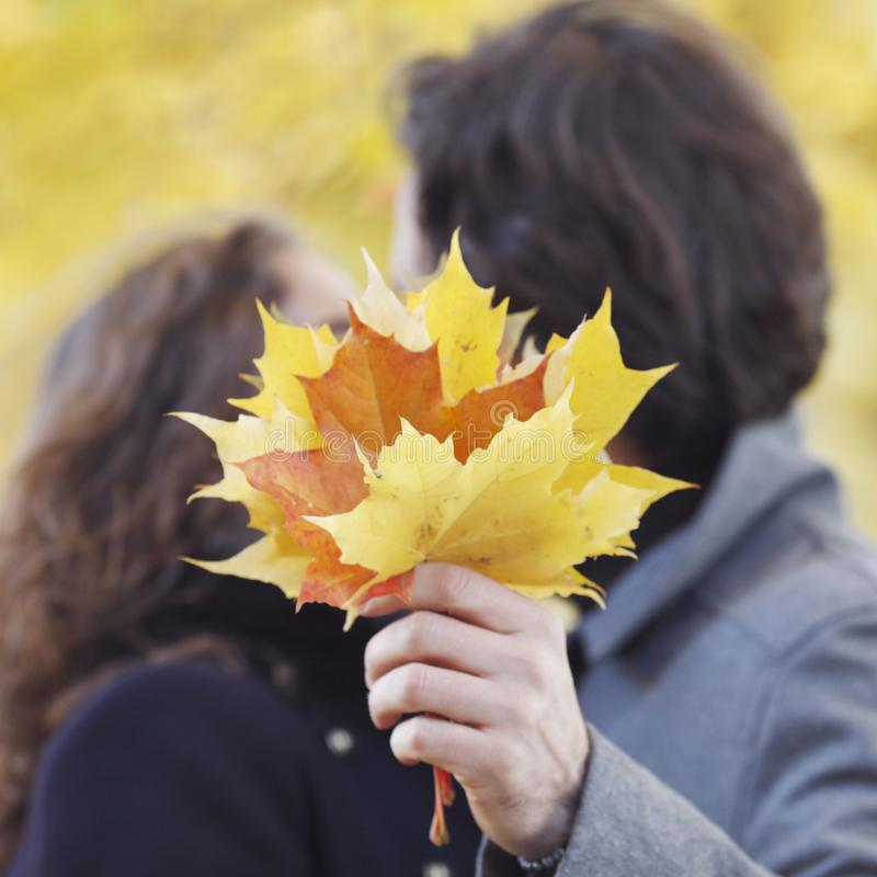 Couple kissing in autumn forest royalty free stock images