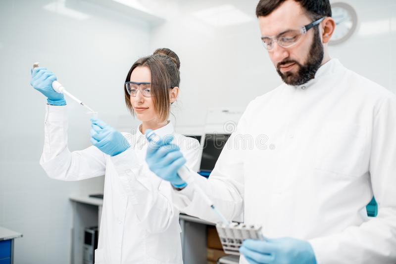Laboratory assistants working with test tubes. Couple of laboratory assistants in uniform working with analysis in test tubes at the medical laboratory royalty free stock images