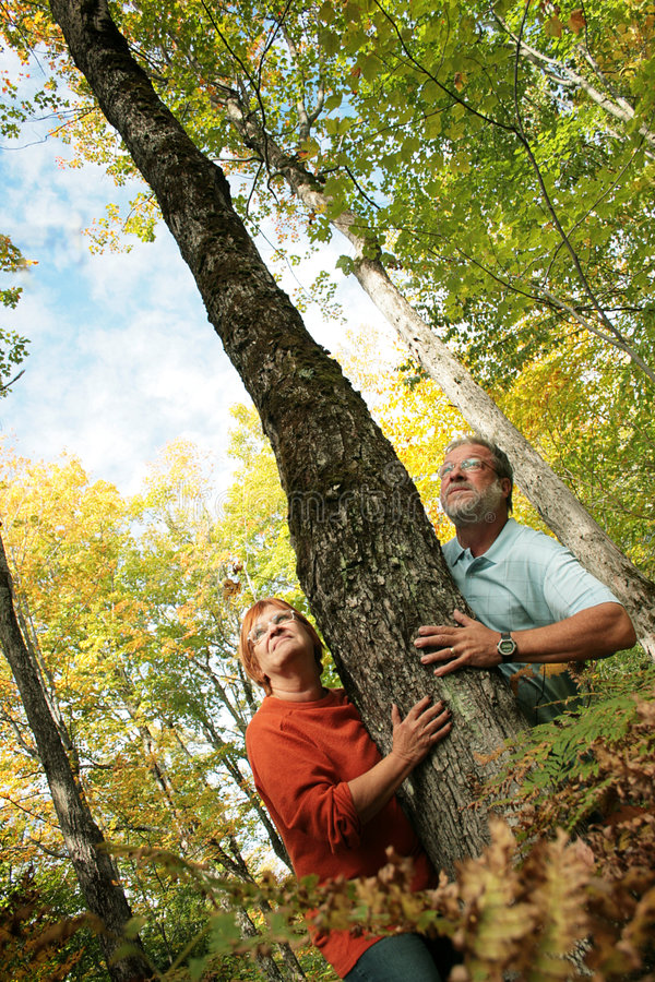 Couple looking up. Couple looking for wildlife, squirel, birds and others. During a nice and colorful autumn day royalty free stock images