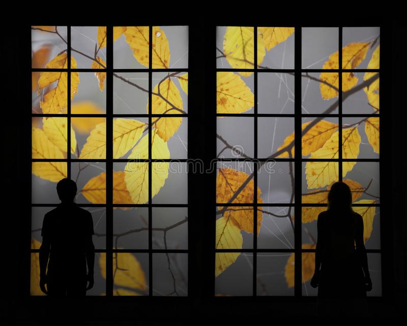 Couple looking through window at colorful fall tree royalty free stock photography
