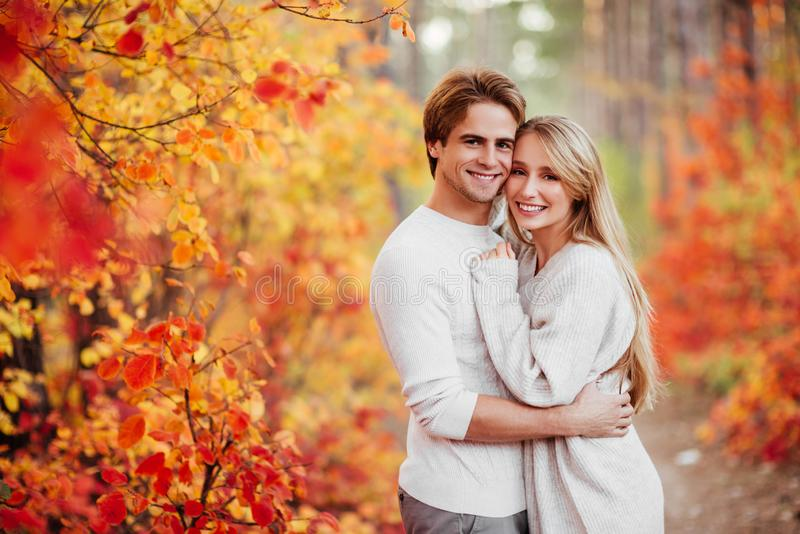Couple in love in autumn leaves royalty free stock photos