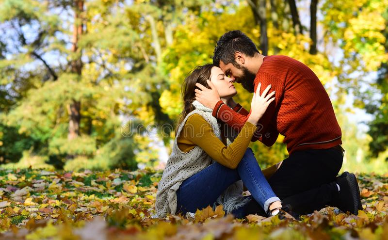 Couple in love sitting on autumn fallen leaves. In a park, enjoying a beautiful autumn day. Man kissing and hugging woman. Love and fall season concept royalty free stock photo