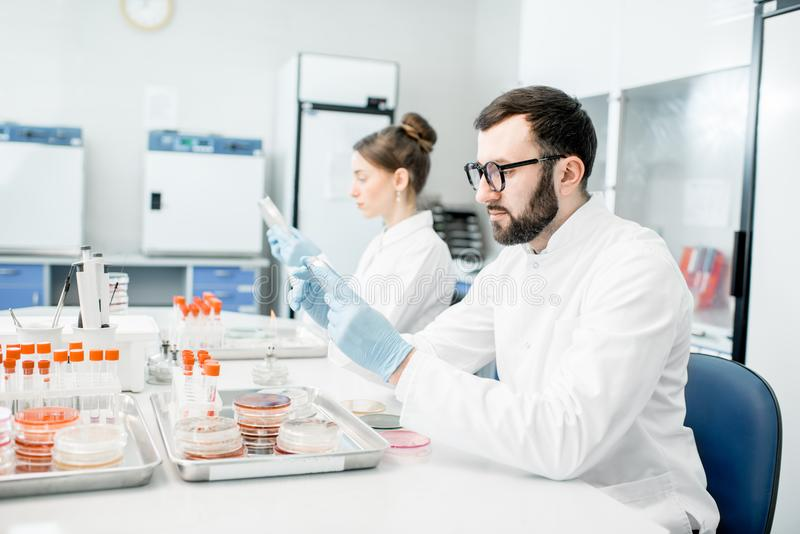 Laboratory assistants in the bacteriological department. Couple of medics in uniform making bacteriological tests sitting in the modern laboratory royalty free stock photos