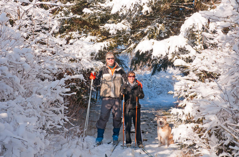 Couple our skiing with their dog stock photography