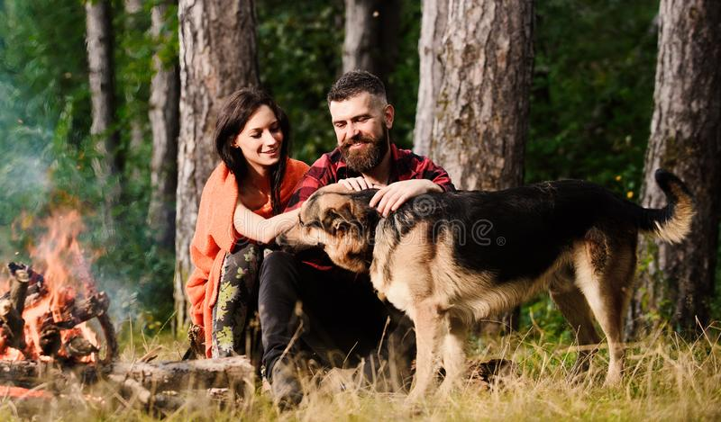 Couple pat german shepherd dog near bonfire, nature background. Kindness and care concept. Woman, men and dog on vacation, hiking. Couple in love or young royalty free stock image