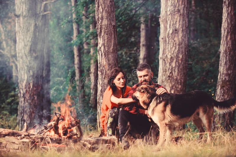 Couple pat german shepherd dog near bonfire, nature background. Woman, men and dog on vacation, hiking. Couple in love or young happy family spend time stock images