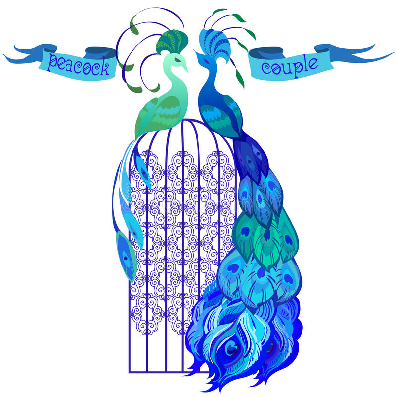 Couple peacocks. Ribbon with text. Blue design. vector illustration