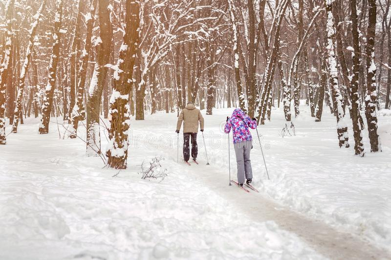 Couple of people enjoying cross-country skiing in city park or forest in winter. Family Sport outdoor activities in winter season royalty free stock photos
