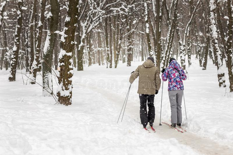 Couple of people enjoying cross-country skiing in city park or forest in winter. Family Sport outdoor activities in winter season royalty free stock images