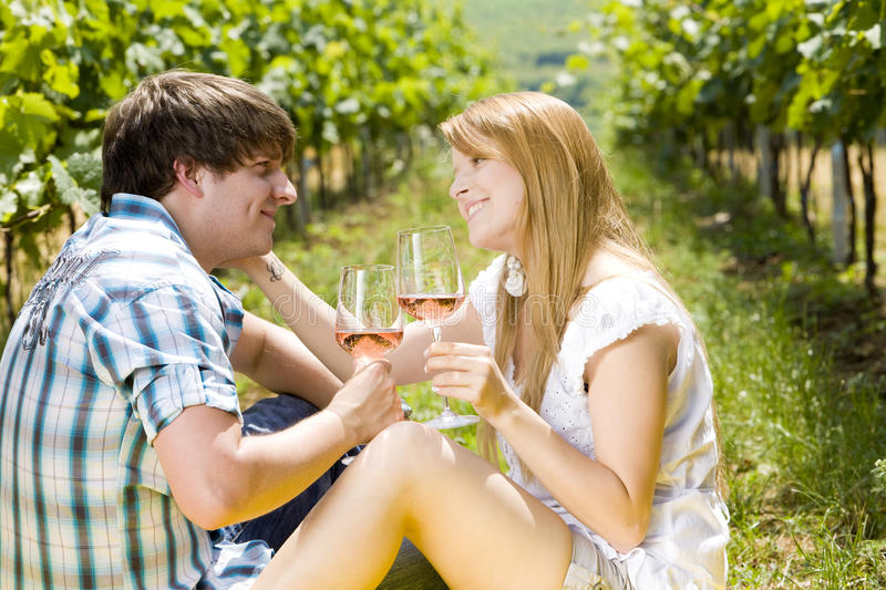 Download Couple at a picnic stock image. Image of girlfriend, loving - 25166271