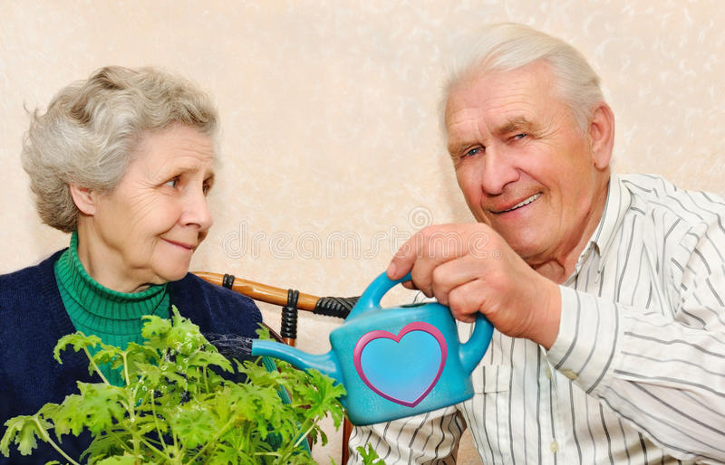 Couple pour to water indoor plant stock photography