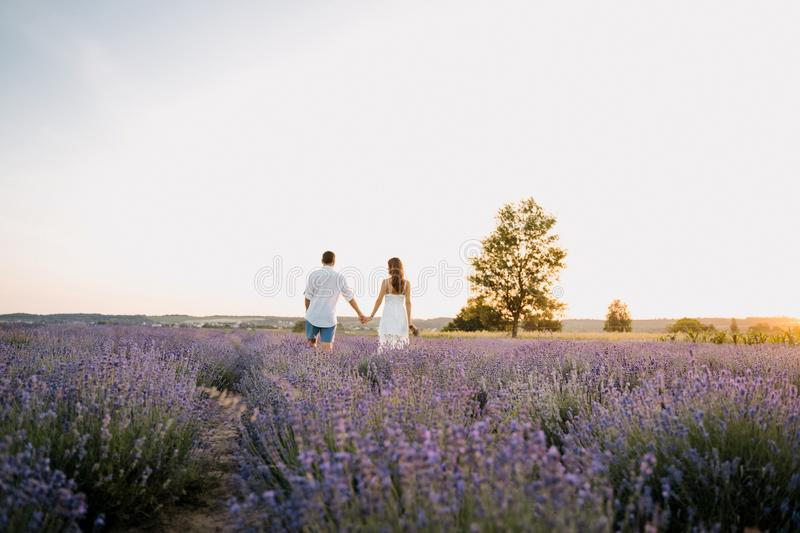 Couple in Purple Lavender Field Romantic Sunset royalty free stock photo