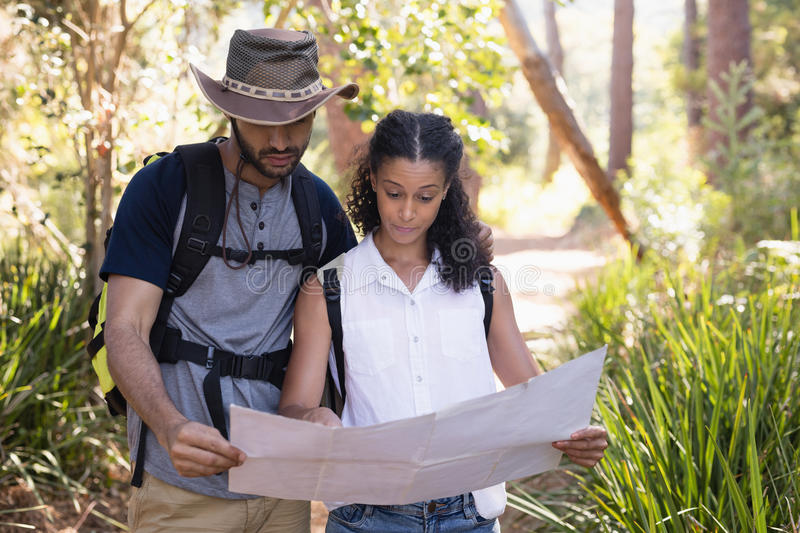 Couple reading map in forest stock photo