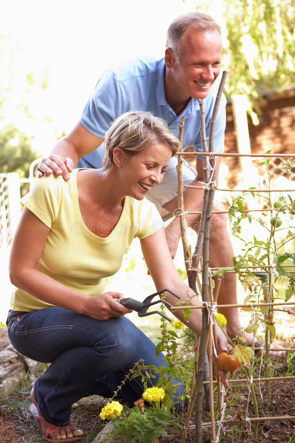Couple Relaxing In Garden smiling stock images
